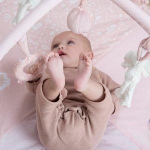 Salteluta bebelusi
