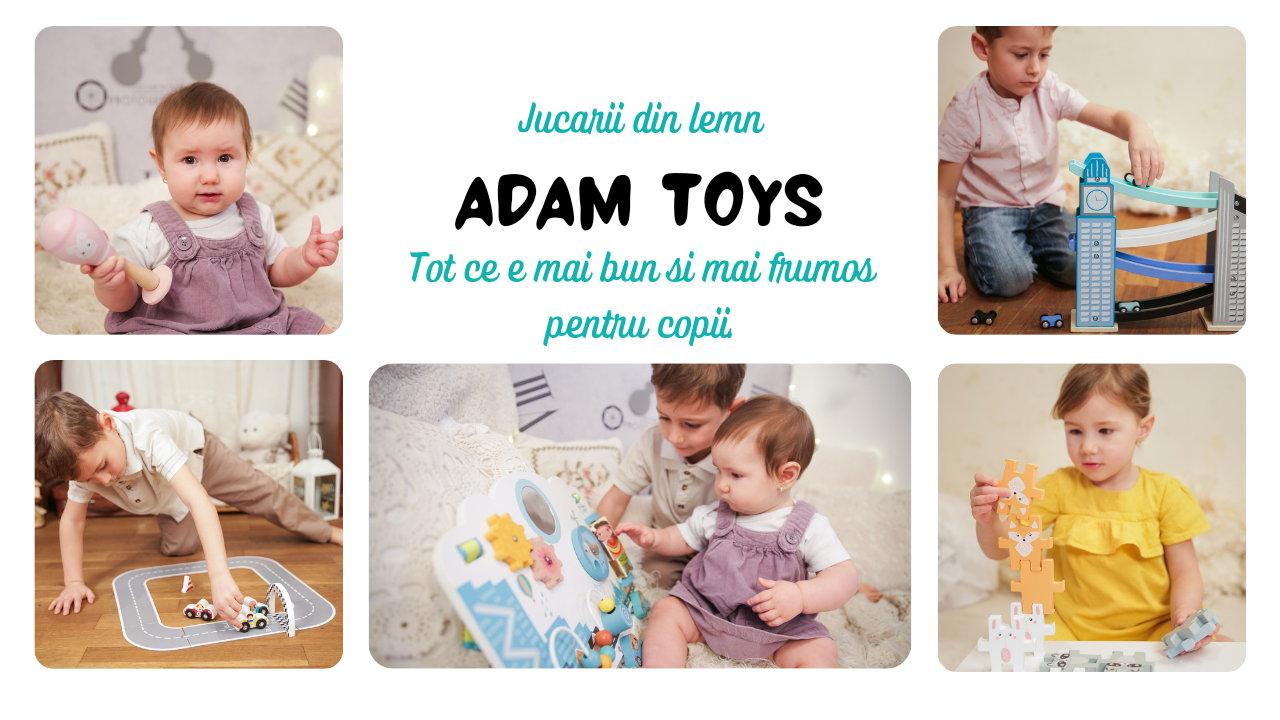 Jucarii din lemn Adam Toys