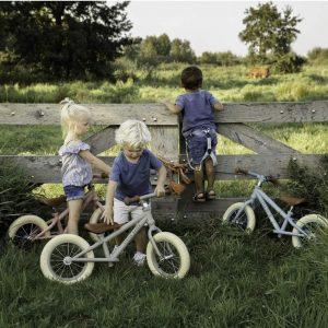 Bicicleta fara pedale fetite